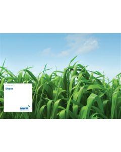 Plakat DIN A 1  Motiv: Biogas